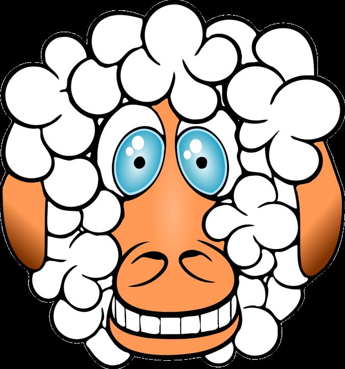 sheep-156163_1280