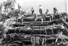 terremoto-mexico-19-septiembre-1985-10-candidman
